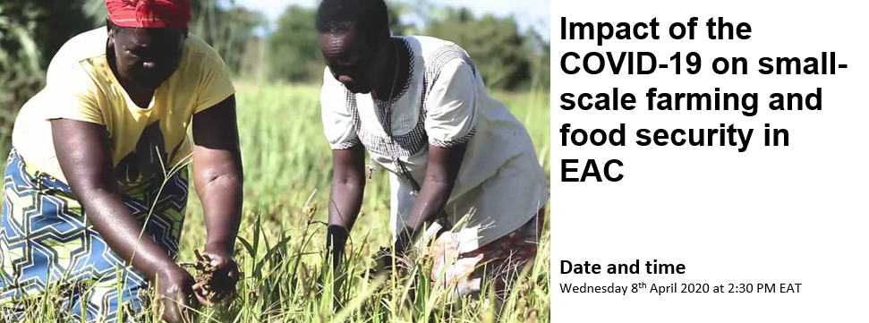 ONLINE CONFERENCE : Impact of the COVID-19 on small-scale farming, food security and sovereignty in the EAC