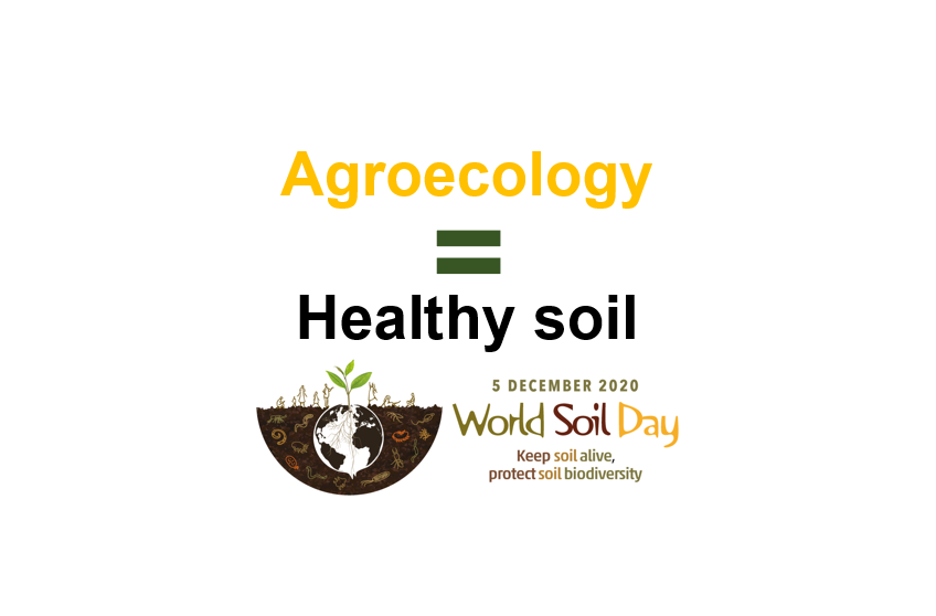 Agroecology equals healthy soil